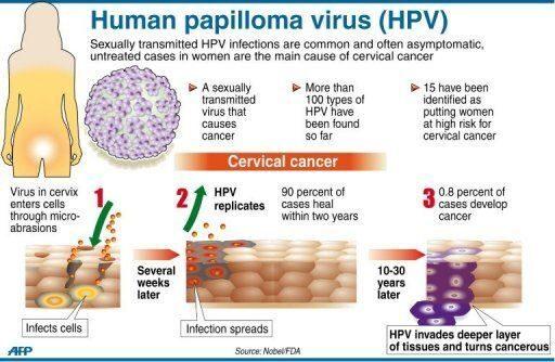 papilloma virus hpv 33 că viermii ies după tratament